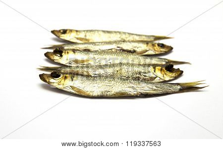 Several smoked European Sprats (Sprattus sprattus) on white isolated background