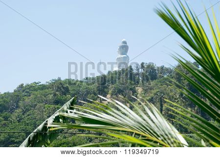 Big Bhudda in the distance on a hill with forest