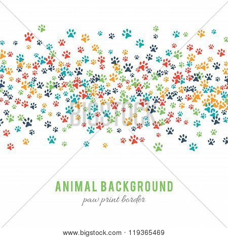 Colorful dog paw prints background isolated on white background