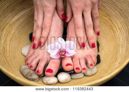 Female Feet In Spa Bowl With Sea Salt, Foot Bath.