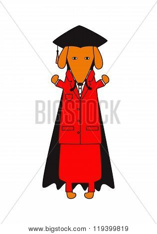 Graduated Dachshund