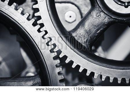 Large Cog Wheels