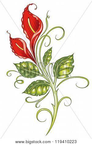 Red calla