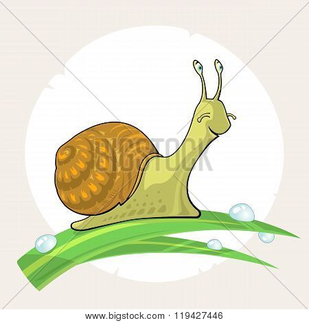 Cute Cartoon Snail On Grass