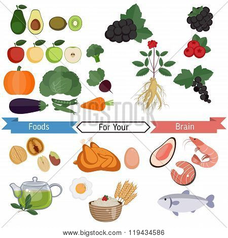 Food For Brain And Health