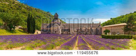 Ancient monastery Abbey Notre-Dame de Senanque in Vaucluse, France