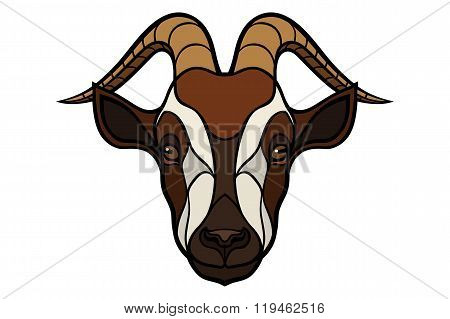 Goat head vector image on white background