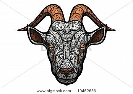 Goat head on white background