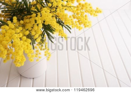 Vase with mimosa flowers