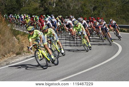 42ª Volta ao Algarve - Alberto Contador