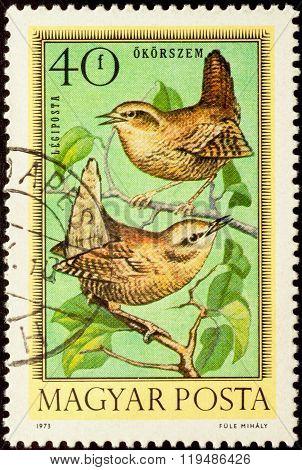 Wren (troglodytes Troglodytes) On Postage Stamp