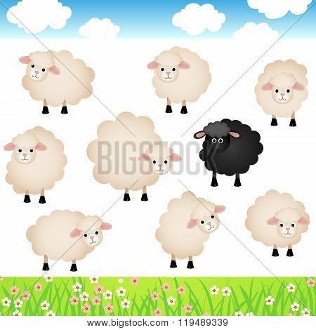 Cute Sheep Set
