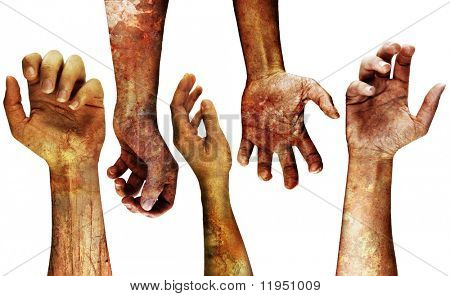 very detailed grungy hands isolated on white poster