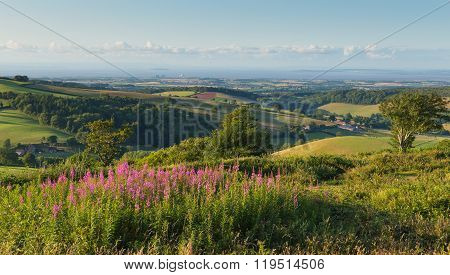 Quantock Hills Somerset England UK countryside views towards Hinkley Point Nuclear Power station