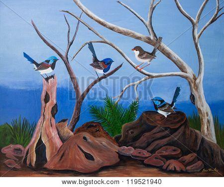 Australian, blue, wren, superb, fairy, painting, bird, native, illustration, nature, wildlife