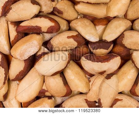 Bertholletia nuts texture