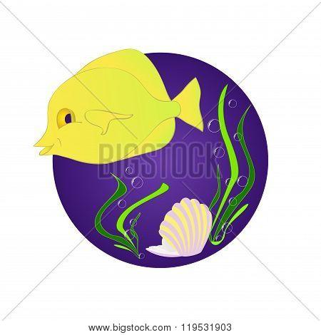 Funny fish zebrasoma