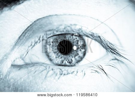 Black and white monochrome macro eye  close up detailed iris retina