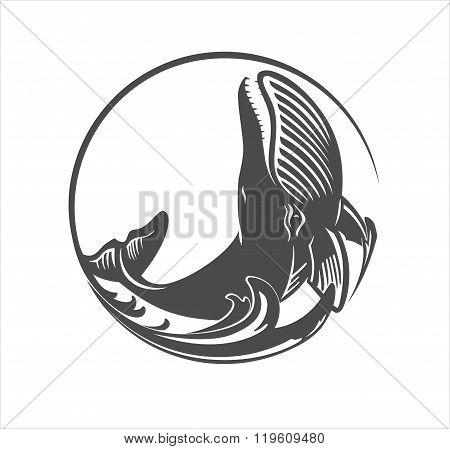 Whale circle