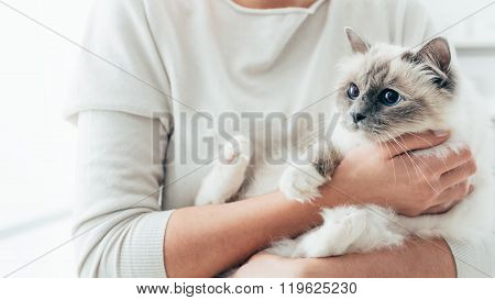 Happy Cat In Her Owner's Arms