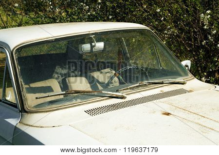 Old Empty Automobile In Weeds