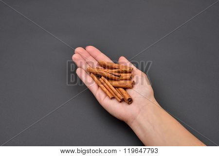 Hand Of A Woman Holding A Pile Of Cinnamon Pods Isolated On Black Background. Spice. Taste. Cooking.