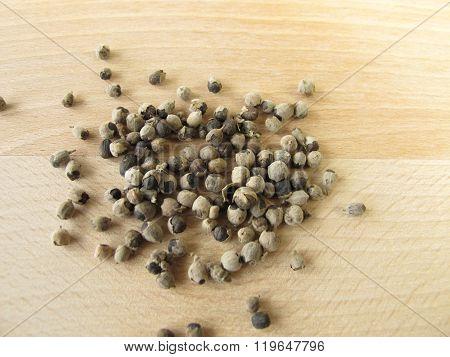 Vitex berries, Agni casti fructus