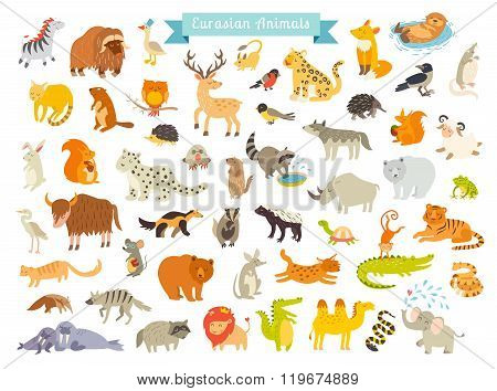 Eurasian animals vector illustration. The most complete big vector set of mammals in Eurasia. Also birds reptiles aes life. Isolated on white background. poster