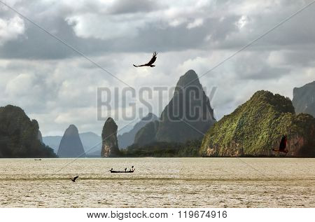 Flight of a sea eagle against mountains