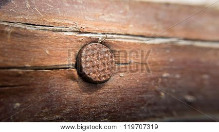 old rusty nail on wood for abstract concept
