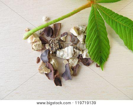 Horse chestnut seeds, Hippocastani semen
