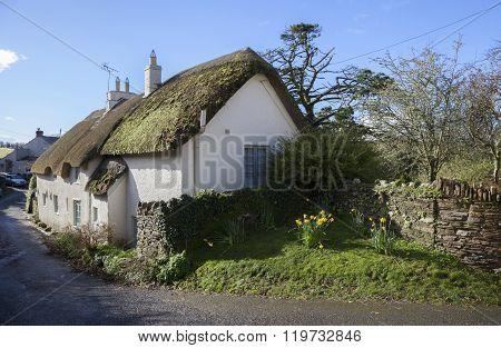 Thatched Devonshire Cottage, England