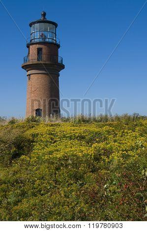 Brick Lighthouse Over Wildflowers On Martha's Vineyard