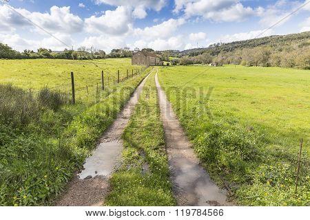 rural path through a green mountain