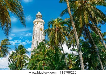Sri Lanka, Lighthouse Dondra Head
