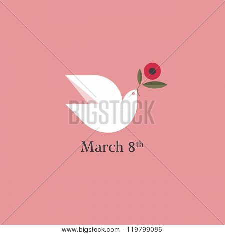 Dove With Flower. International Women's Day 8Th March Card. Flat Style Vector Design