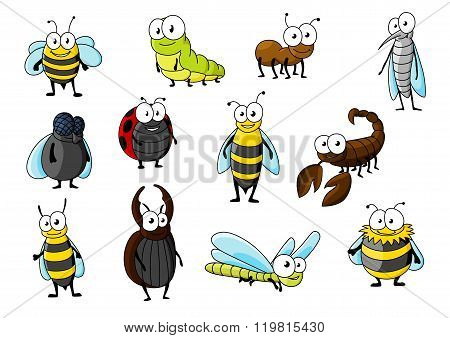 Cartoon funny insect animals characters