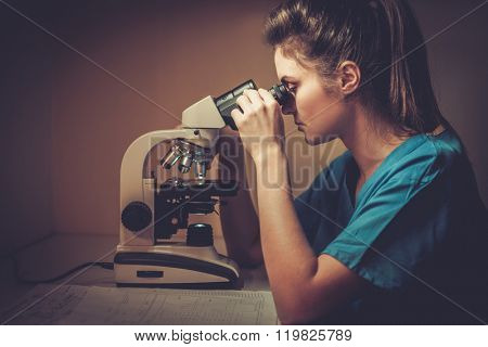 Confident veterinarian examining the test under the microscope in veterinary clinic.