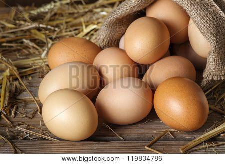 Raw organik farm eggs