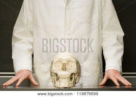 Student stood with human skull