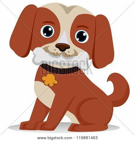 Dog biting bone