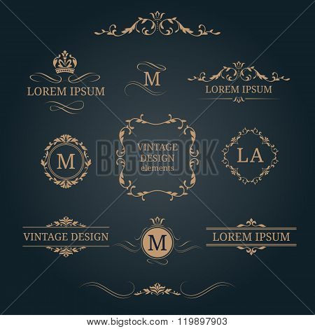 Set of elegant floral monograms and borders