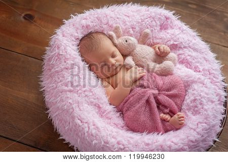 Newborn Girl Sleeping With A Bunny Stuffed Animal