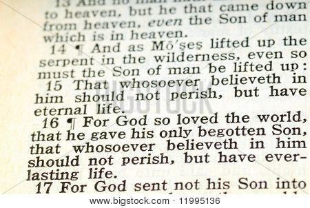 John 3:16 English