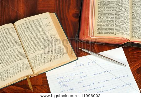 a greek and english new testament opened to john 3:16 with study notes poster