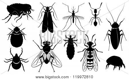 Set of vector the harmful,dangerous, infection carriers, stinging and parasitizing insects - mosquito, fly, wasp, ixodic tick, bed bug, moth, dust tick, flea, ant, cockroach, louse poster