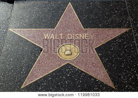 Walt Disney Hollywood Star
