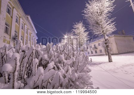 Winter, city landscape. Frozen trees and buildings. Cold night.