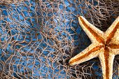 Sea Star on fishing net studio shot poster