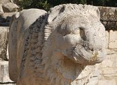 Ancient lion sculpture ruins from Ephesus, Turkey poster